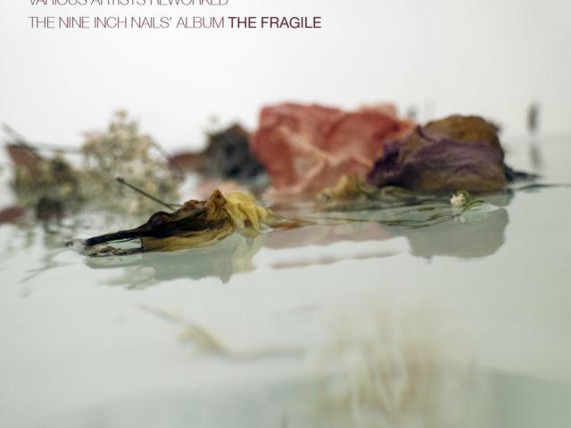 The Fragile dei N.I.N. Nine Inch Nails usciva 20 anni fa: ecco il disco tributo curato da O'Live Produzioni, in collaborazione con Seahorse Recordings