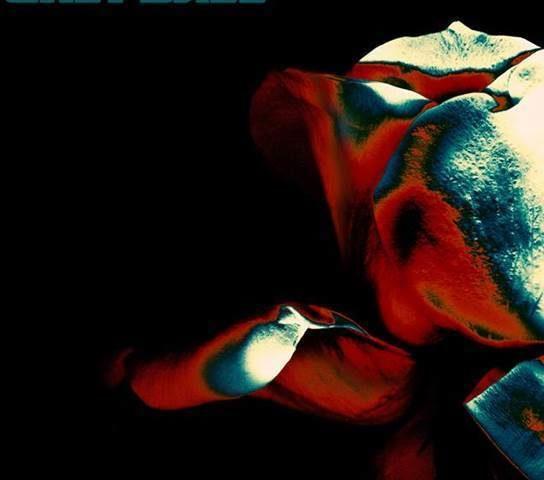 Grey Daze, quarto singolo per la band di Phoenix