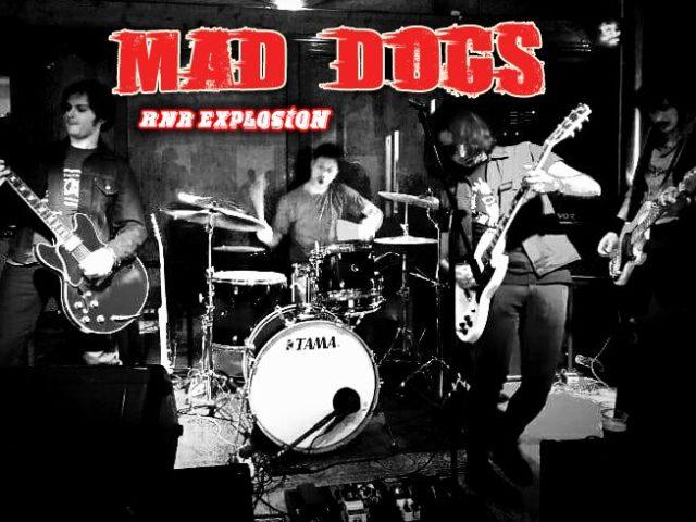 La spilletta è in omaggio: incontro con Marco Cipolletti dei Mad Dogs.