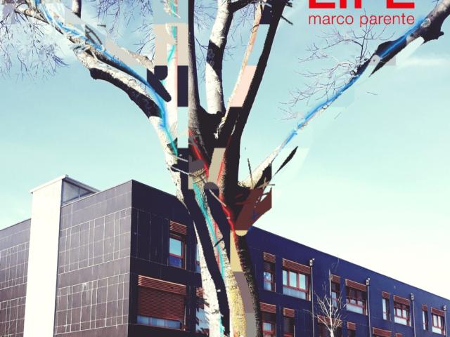 Life, il nuovo disco di Marco Parente dal 23 ottobre